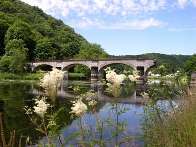 2008 - Bohan - été - Semois - pont cassé - fleurs (JM Verday Ardenne namuroise)  (2).JPG